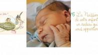 Sincères félicitations à Catherine-X Thiffault et à Sébastien Lepage qui sont les heureux parents, depuis le jeudi 2 décembre 2014, vers 00h15, d'Estelle, une descendante de Ferdinand Thiffeault. Cliquez sur […]